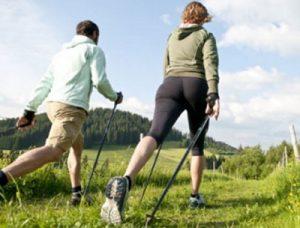 Trainer-Ausbildung und Fitness